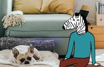 Obývací pokoj(gauč+stěna)