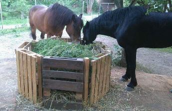 Seno pro koně
