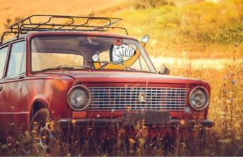 Na novější automobil, starý už dosluhuje